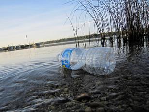 "Beware of ""BPA-Free"" plastics, a U of C study reports"