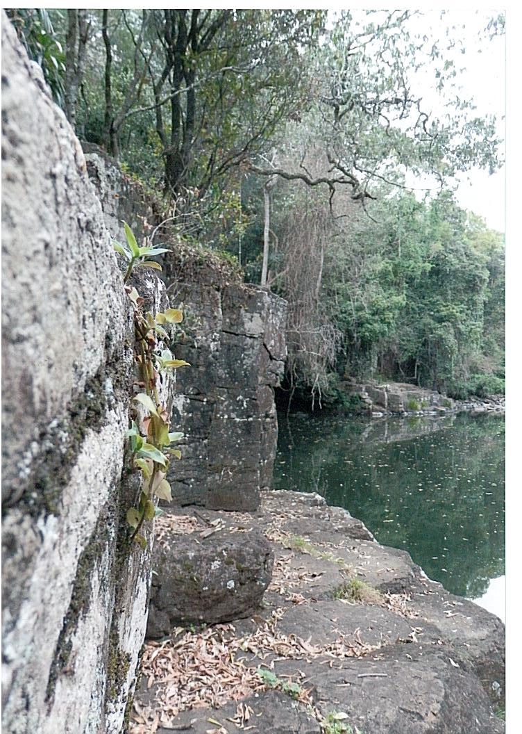 swimming hole 1