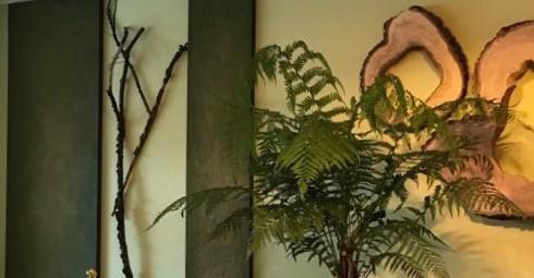 Lehm und Holzelemente ein natürliche Kombination
