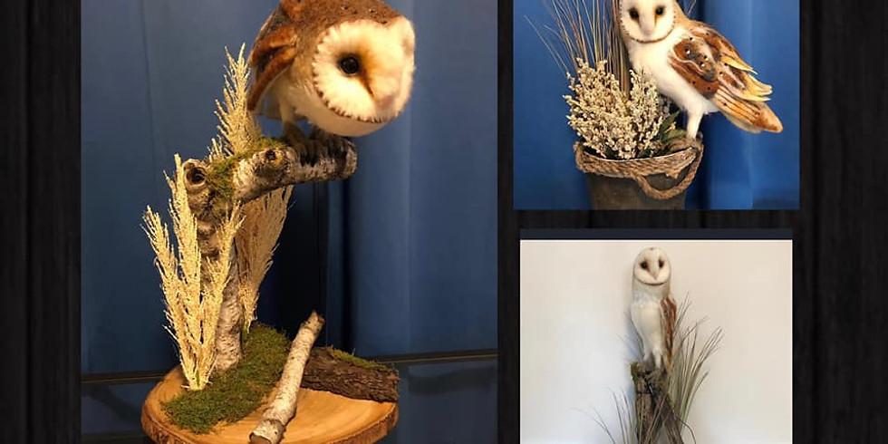 NEW 2021 dates-Barn Owl Workshop with Steven Botelho