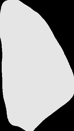 Kopie%20von%20123_shape_edited.png