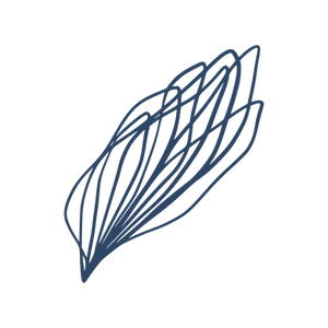 Botanical_element_blue-15.png