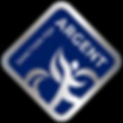 FQA_Sanction-Argent.png
