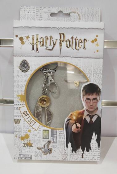 Porte clef et pins Harry Potter