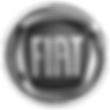 Cliente Fiat