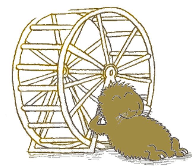 hamsterrad2.jpg
