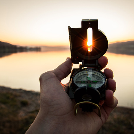 Selbstorganisation – das innere Navigationssystem entwickeln