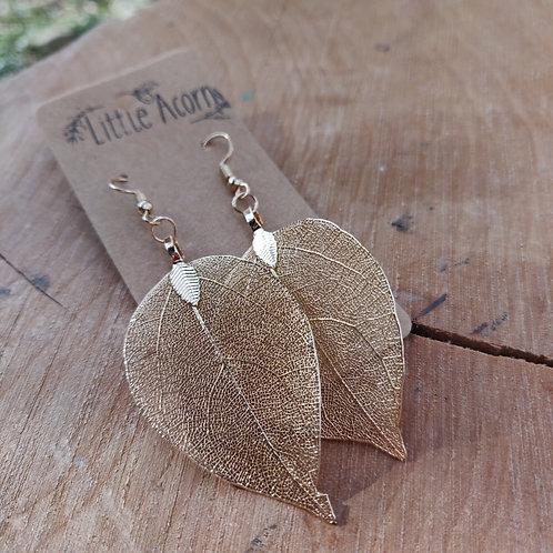gold colour leaf earrings