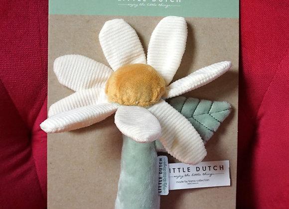 Little Dutch, Rassel - Blume