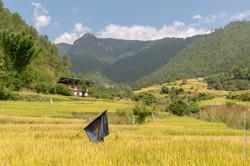 Bhutan-001