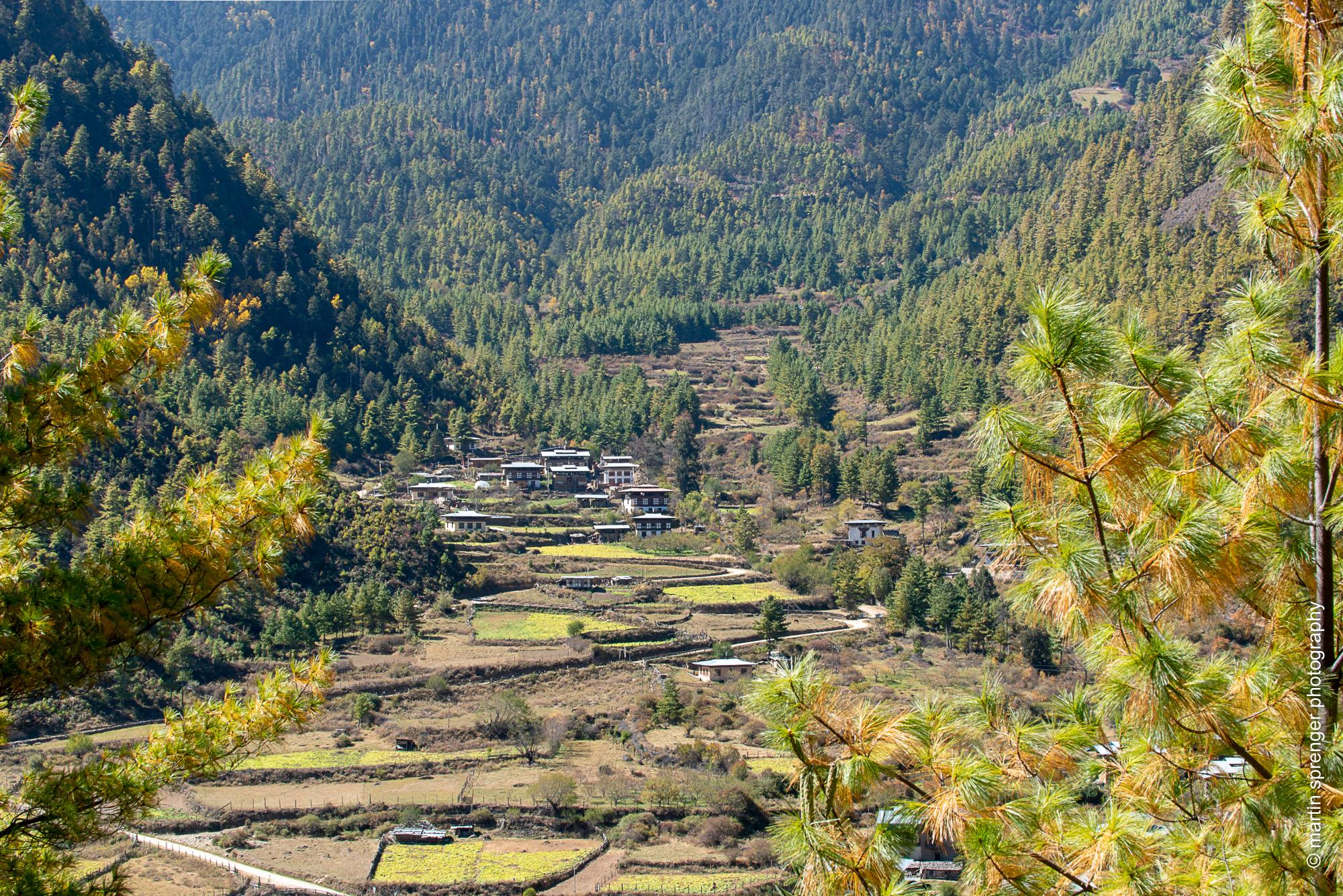 Bhutan-049