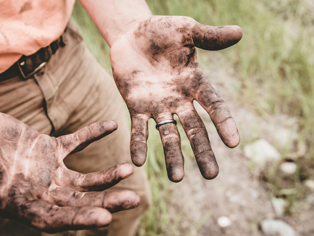 Dig In and Get Dirty: Volunteer for Recovery Efforts