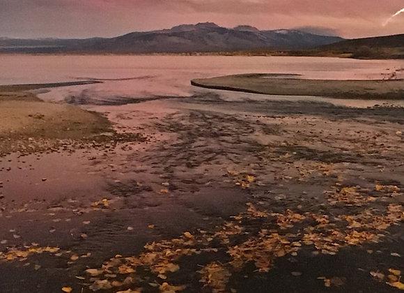 Mono Lake Fall Flow