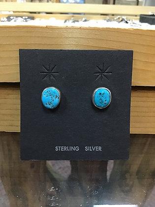 #16 Sleeping Beauty Turquoise Posts