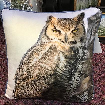 Great Horned Owl Bishop