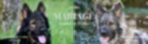 Mariage Nanouk:MAlo 2020.png