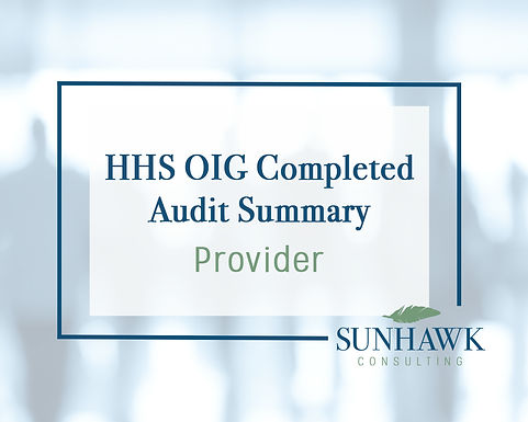 NEW! SunHawk Summary of HHS OIG Provider Focused Audits