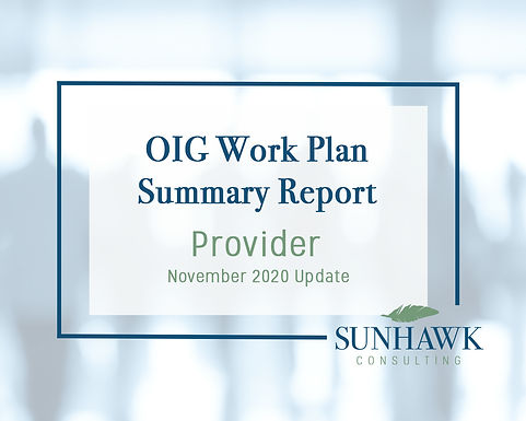 SunHawk's OIG Work Plan November 2020 Update: Provider Focused