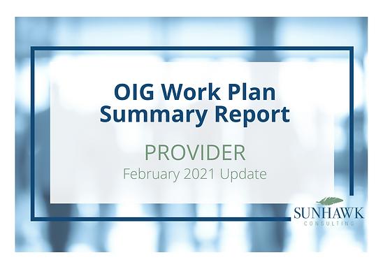 SunHawk's OIG Work Plan February 2021 Update: Provider Focused