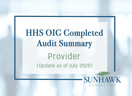UPDATE August 2020: SunHawk Summary of HHS OIG Provider Focused Audits