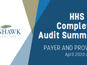 SunHawk's HHS OIG Audit Summary Reports - Provider and Payer April 2021 Update