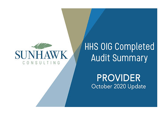 October 2020 Update: SunHawk HHS OIG Audit Summary Report for Provider