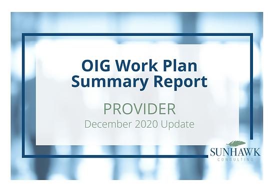 SunHawk's OIG Work Plan December 2020 Update: Provider Focused