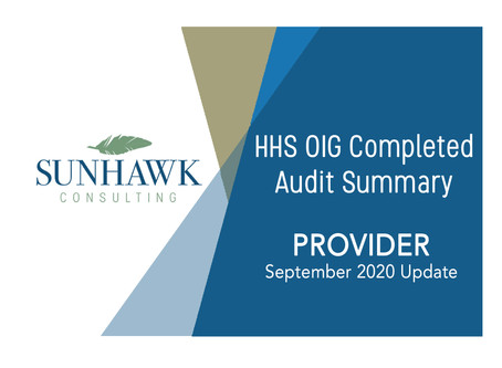 September 2020: SunHawk Summary of HHS OIG Provider Focused Audits