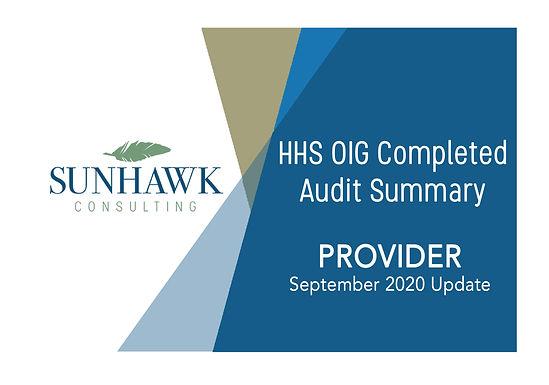 September 2020: SunHawk Summary of HHS OIG Provider Focused Audits