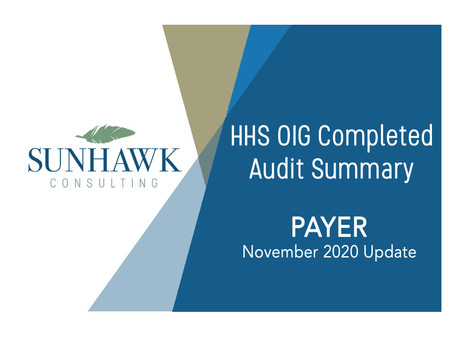 Nov. 2020 Update - SunHawk's Payer Focused Audit Summary Reports