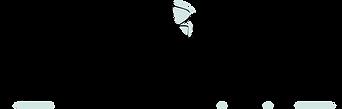 Logo_Diana Zimmermann.png