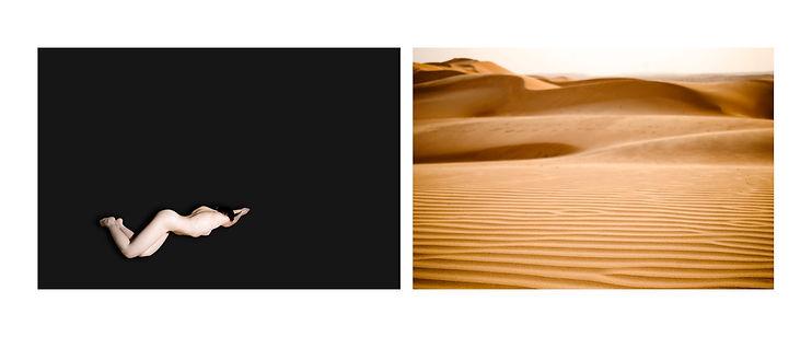 1_SNAKE+DESERT.jpg