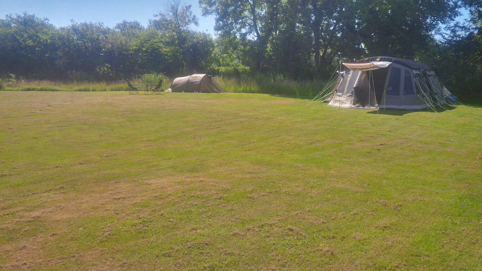 Grass tent pitches