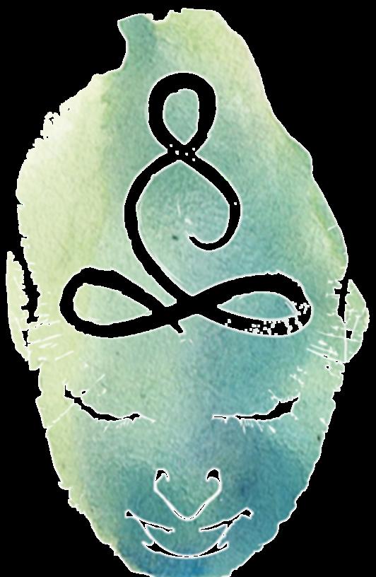 Montag Vinyasa Yoga