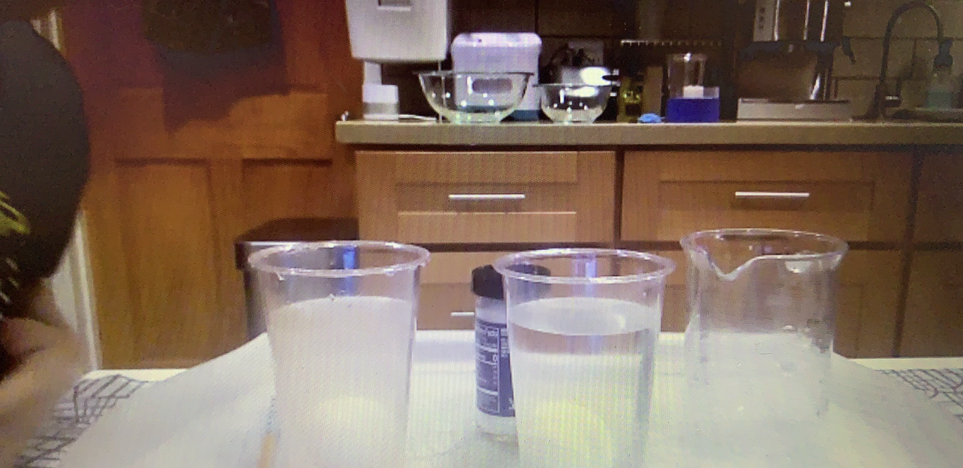 During class, a student shows his environmental science experiment's set up.