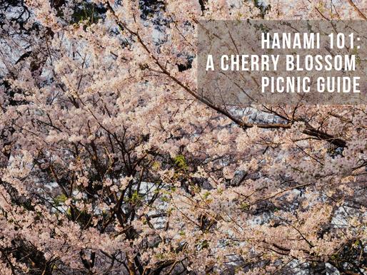 Hanami 101: A Cherry Blossom Picnic Guide