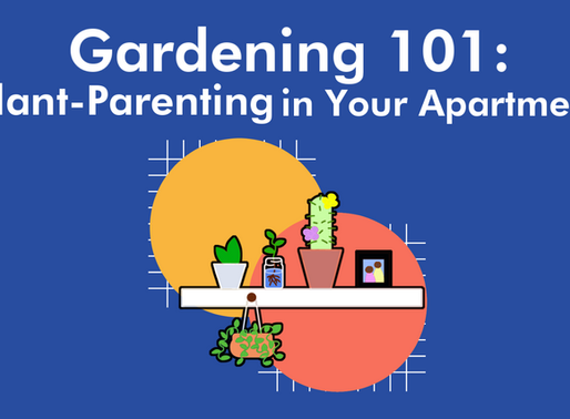Gardening 101: Plant-Parenting in Your Apartment