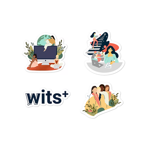 WITS Sticker Bundle (Small)