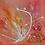 Thumbnail: Fraîcheur printanière