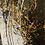 Thumbnail: OMBRES ET LUMIERE 2