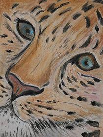 leopard01.jpeg