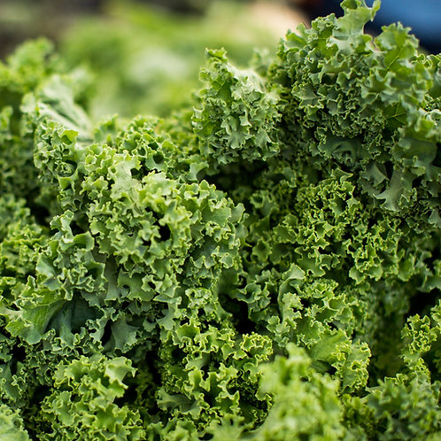 Kale, Green Curly appx 250g