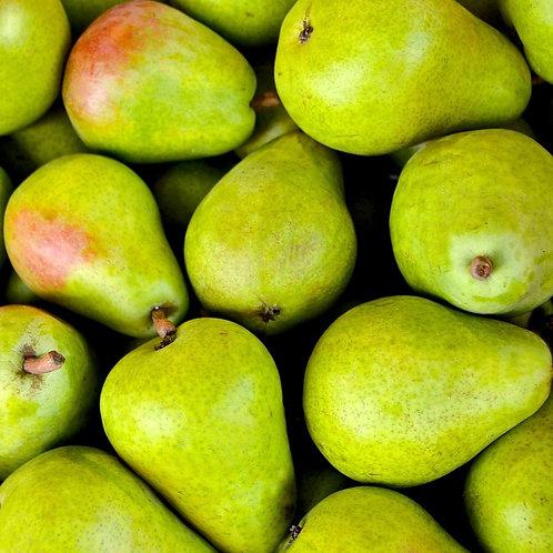 Pear, Anjou green pear