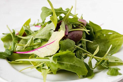 Salad Leaves, mixed Rocket, Red Streaks Mustard,Batavia