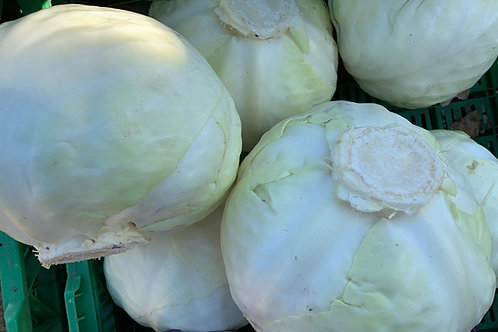 Cabbage, appx 1kg