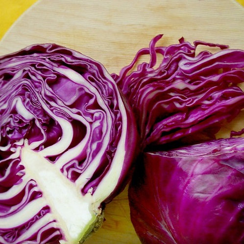 Cabbage, Red UK