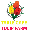 Table Cape Tulip Farm Logo.png
