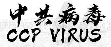 中共病毒.jpg