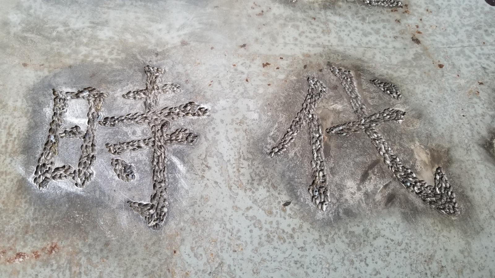 香港雕塑建设图片 (69)
