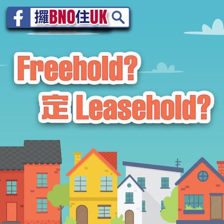 咩係leasehold, freehold?